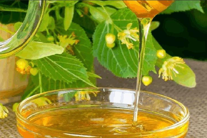 Липовый мед, целебные свойства и противопоказания