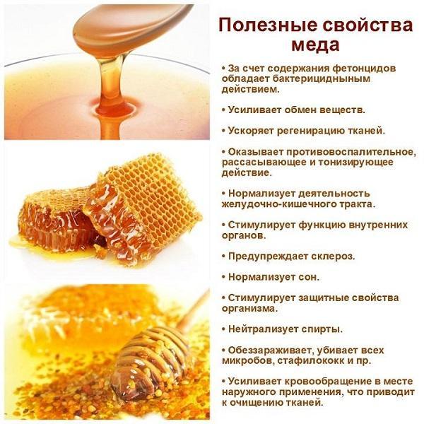 Польза пчел