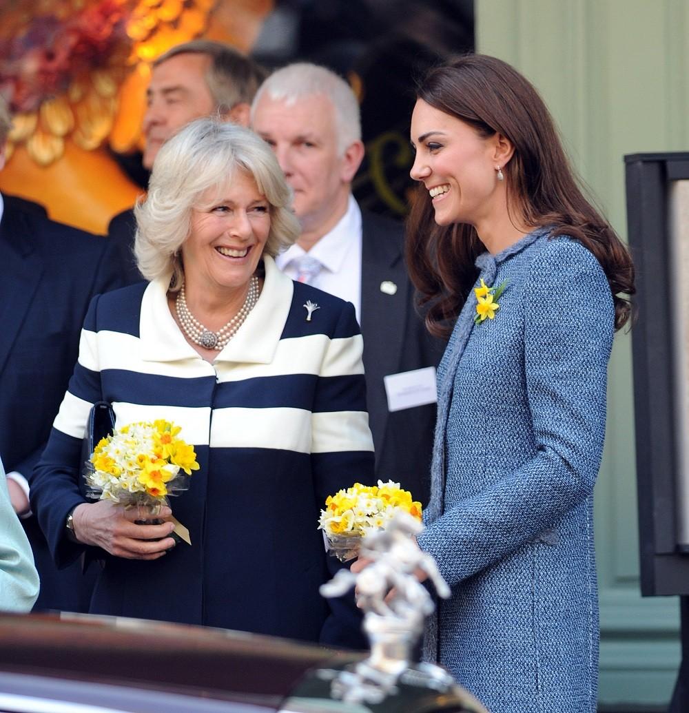 Герцогиня Корнуольская Камилла и Герцогиня Кембриджская Кейт Миддлтон регулярно применяют маски для лица с пчелиным ядом