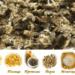 Инсульт - причины, симптомы, профилактика пчелопродуктами